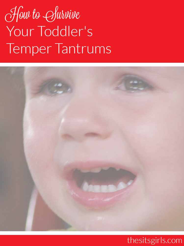 Learn how to survive your toddler's temper tantrums, and bring peace back into your home.