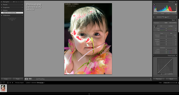In this example you can see where the picture was blown out due to overexposure | photography tips