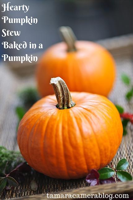 Pumpkin Stew Recipe To Blow Your Mind