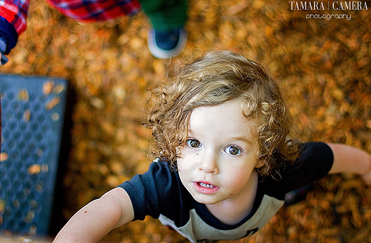 Photography Tip: Take your pictures from different angles. This picture was taken from above the subject.