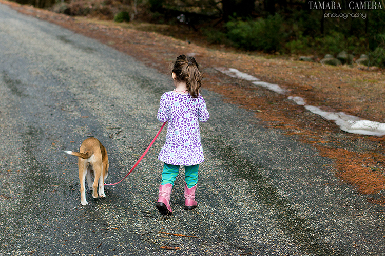 """""""Smile at the camera!"""" is a great thing to call out to your photography subjects, but sometimes you can get an even better picture when they aren't paying attention. This shot from behind perfectly captures the moment of this little girl and her dog going for a walk."""