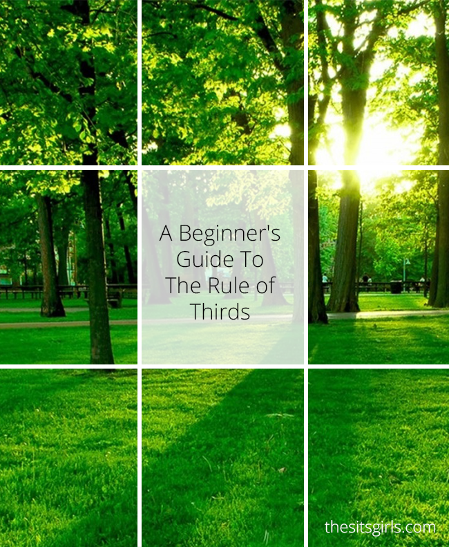 Photography Tips | Learn how to use the rule of thirds for great photo composition.
