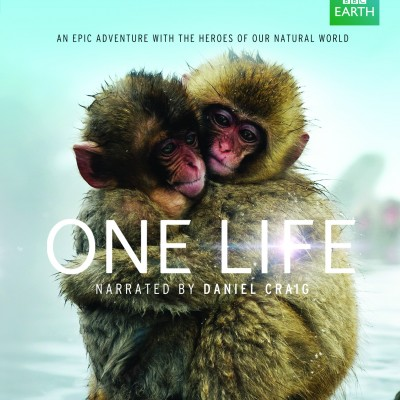 BBC One Life Movie Launch Twitter Party: #BBCEarth