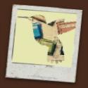 blog-button-hummingbird-1