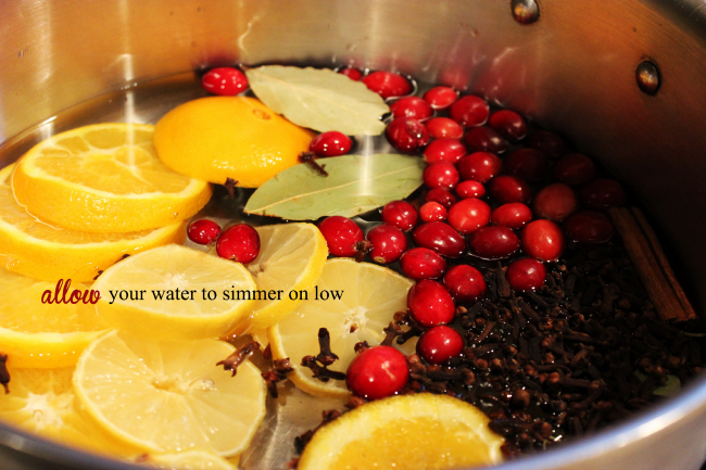 Allow your potpourri to simmer all day, and fill your house with the holiday smell.