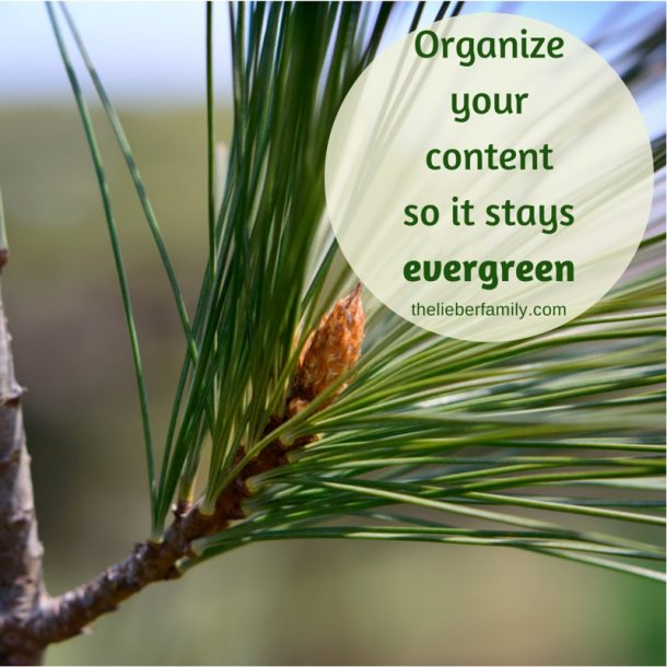 Blog Tips: Learn how to organize your evergreen blog content.