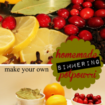 Homemade Simmering Potpourri For The Holidays