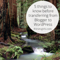 Knowing these five things will make your transfer from Blogger to Wordpress smooth.