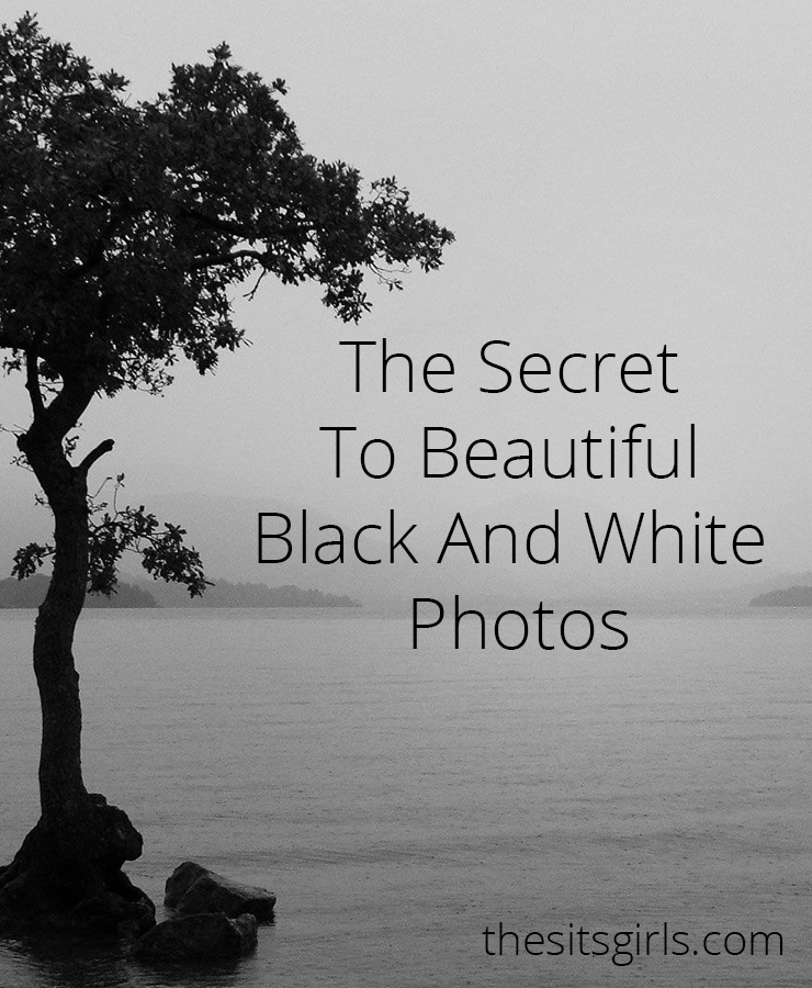 Learn to Create Amazing Black and White Photographs ...