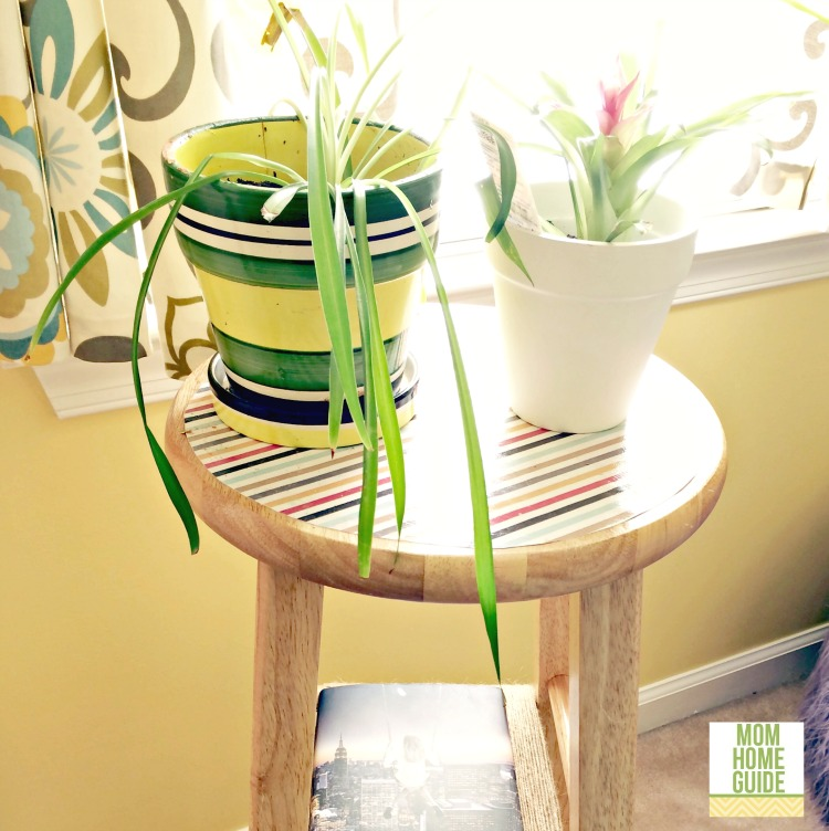 A super easy DIY project to move your plants closer to the window. | DIY Plant Stand