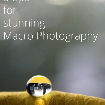 5 Tips For Stunning Macro Photography | SITS Summer Photography Challenge Day 3