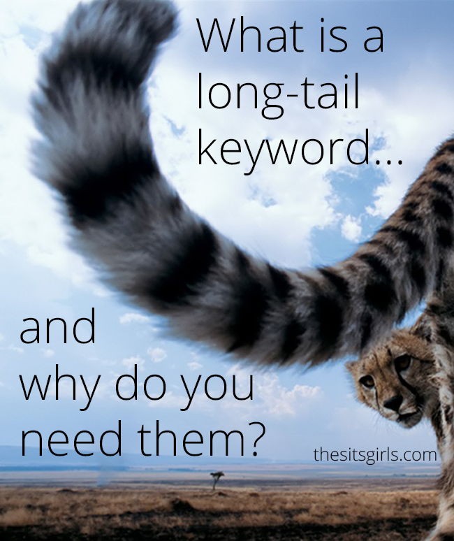 How To Blog | SEO | What is the difference between a keyword and long tail keywords? Click through to find out, and learn the secret to make your blog rank high in Google searches.