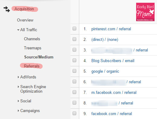 View the traffic from social media networks in your Google Analytics to see which networks are working for your blog.