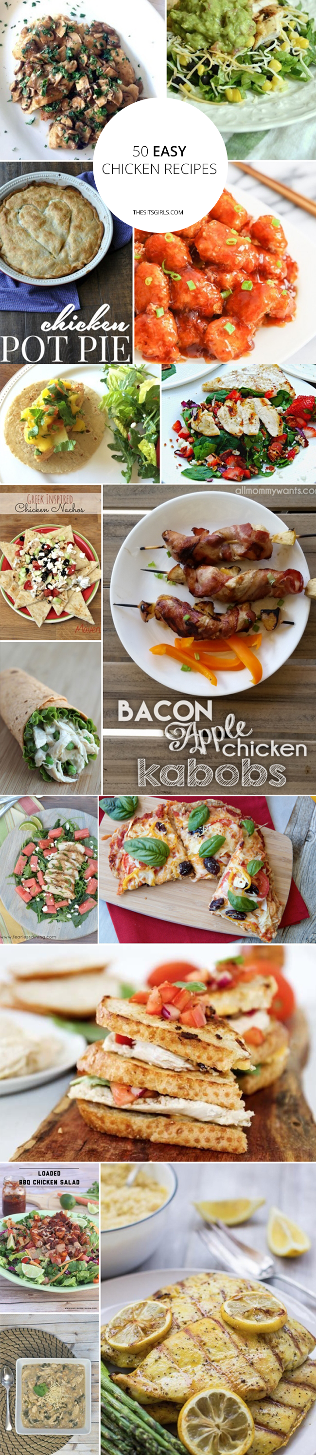 50 Fantastic & Easy Chicken Recipes | Includes baked and grilled chicken recipes and everything in between (tacos, pizzas, sandwiches, and more) to make your meal planning easy.