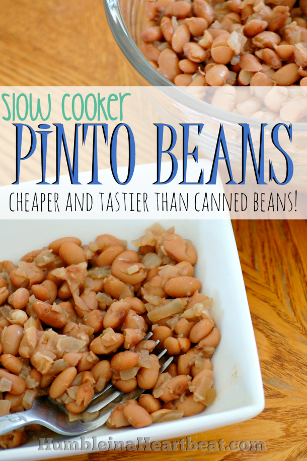 Use the slow cooker to save money and make a fabulous bean side dish.