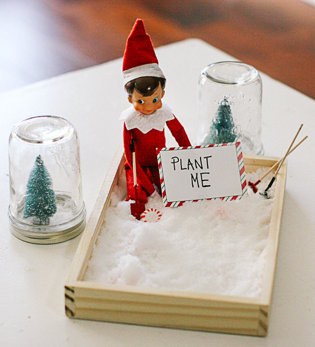 Help your little one grow candy canes this year! | Elf On The Shelf Idea