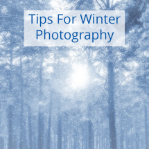 3 Tips for Winter Photography