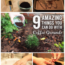 9 Amazing Things You Can Do With Coffee Grounds