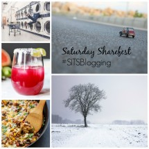 Link up your blog post to our Saturday Sharefest!