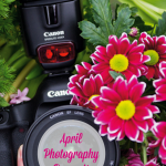 30 Days Of Photography Prompts For April