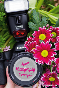 Do you need photography inspiration? We have photography prompts for each day of April to help you capture beautiful photos all month long.