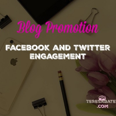Blog Promotion: Facebook and Twitter Engagement