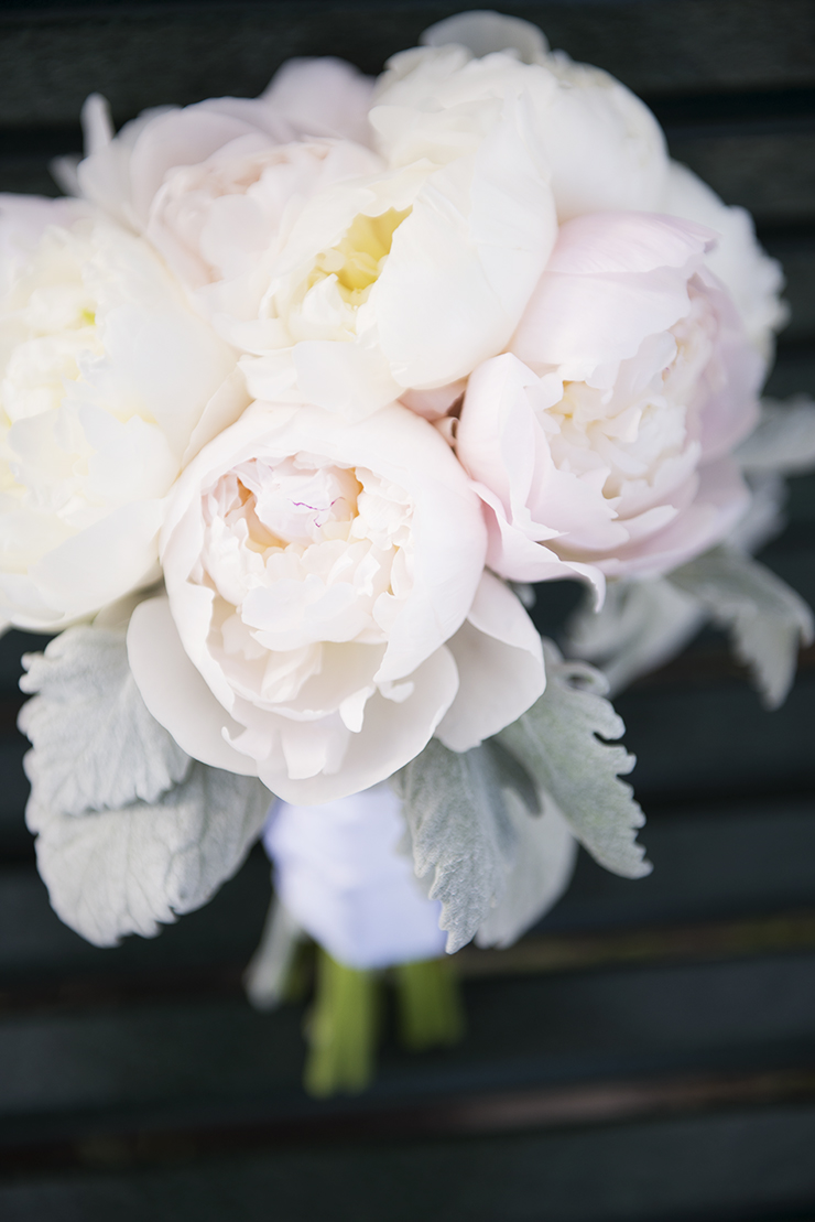 Shooting sharp images in Marco | Pink Flowers