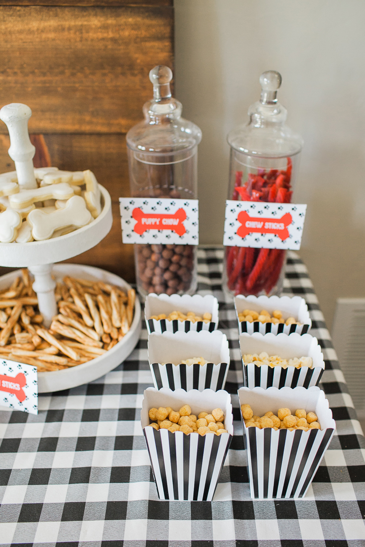 This black and white scheme is so cute for a Little Girl Puppy Party!