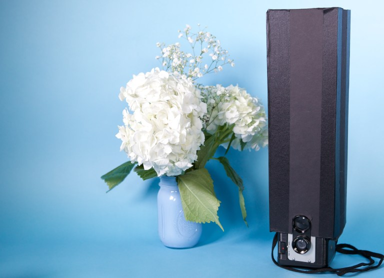 White Flowers And Camera