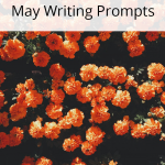 Do you need a little writing inspiration? We have writing prompts for each day of May to help you write and blog all month long.