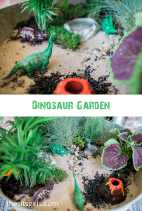 Make your own dinosaur garden! This is a fun summer activity to do with your kids. Choose plants that are easy to maintain, and watch their love of gardening grow. Don't forget to include a venus fly trap - no dino garden should be without one.