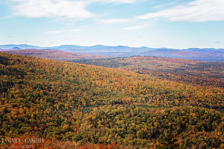 Fall Mountain Photography