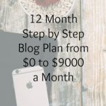 12 Month Step by Step Blog Plan from $0 to $9000 a Month