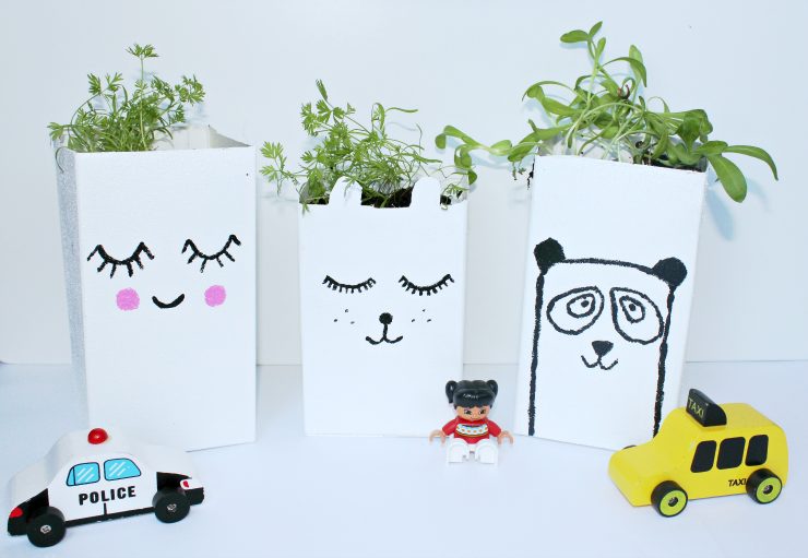 Line your milk carton planters up on a windowsill where they will get plenty of natural light!