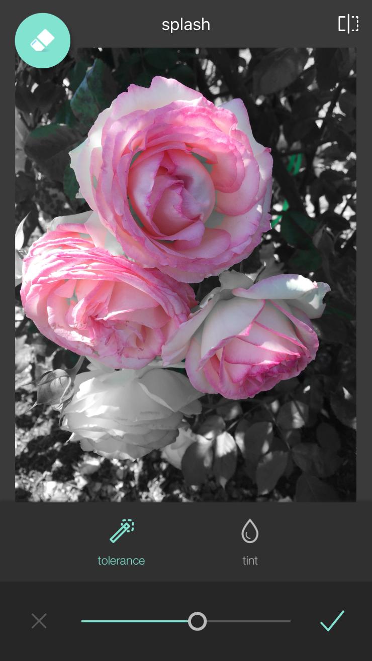Pixlr App Photo Edit - color splash