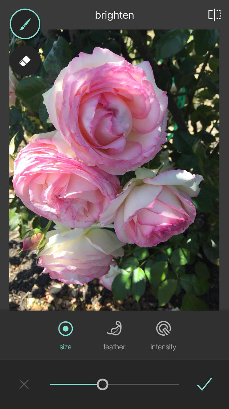 brighten photos with the pixlr app