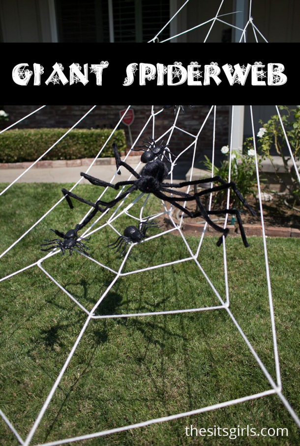 This giant lawn spiderweb is simply amazing!