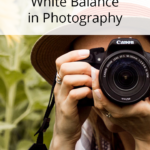 How to Set Your White Balance in Photography