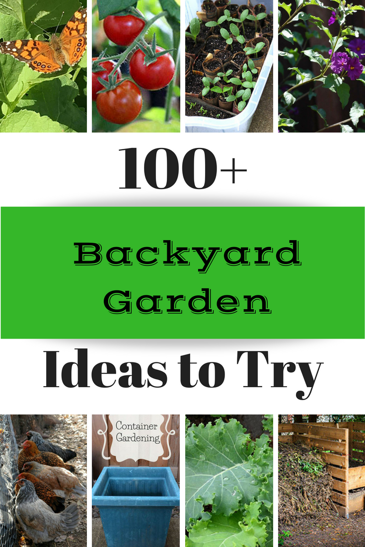 This list of 100 backyard garden ideas includes plant info, decor inspiration, DIY landscapes, and more gardening fun. Great for small or large yards.