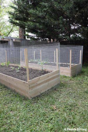 100 Backyard Garden Ideas Backyard Diy Projects