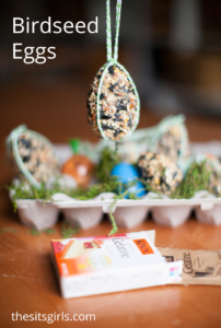 Birdseed Eggs