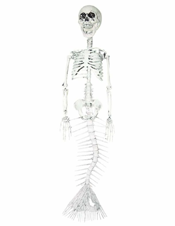 Mermaid Skeleton Prop
